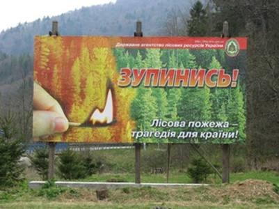 Лісова пожежа - трагедія для країни