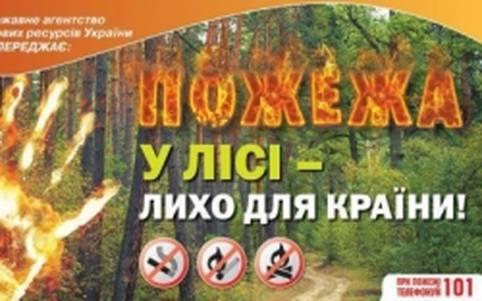 Пожежа в лісі - лихо для країни