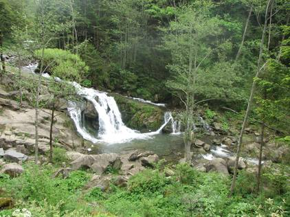 Екологічний туризм на території НПП «Сколівські Бескиди»
