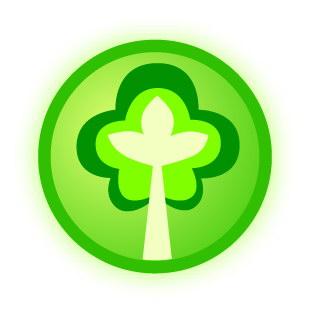 Майбутнє лісу у твоїх руках