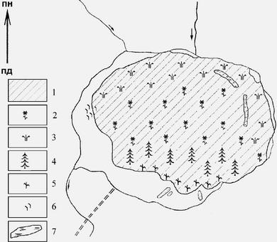 Картосхема рослинного покриву оліготрофного болота Журавлине